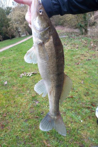 2 touche = 1 poisson ... rivière de plus en plus haute