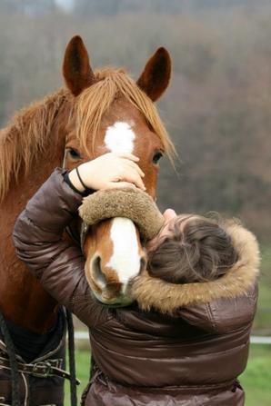 Peu importe comment tu es arrivée ici, peu importe ce qu'il a fallut que tu fasses, tu as réussi. Je suis si amoureuse de ce cheval que tu es devenue.
