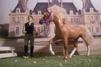 Mes chevaux 4