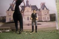 mes chevaux et compagon