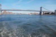 New York, concrete jungle where dream are made of ♫ ♥