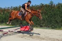 Pourquoi je monte à cheval ?