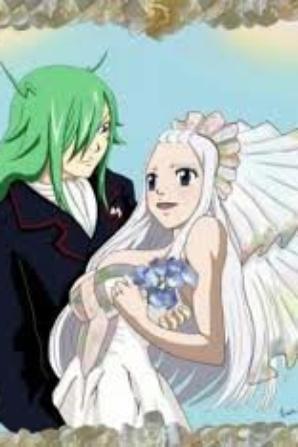 Mes couple fairy tail préférais