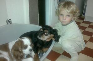 ma petite puce nolane avec ses chiens verdi &reine <3