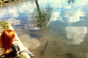 Séance n°16, Sortie près du Lac.