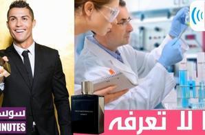 Soussia Tv  سوسية تيفي