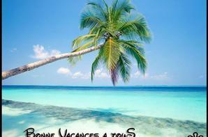 bonne vacances les amies !!!profitez bien ...