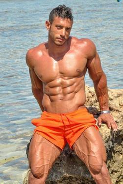 Hany Saeed