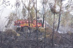 Le Sdis44 durant les incendie en Gironde