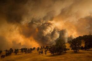 États-Unis. En images. 9 600 pompiers mobilisés contre les feux en Californie