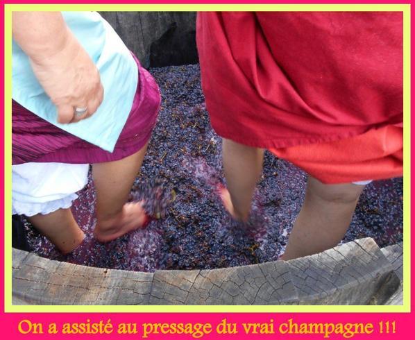 Le pressage de ce doux breuvage : le champagne