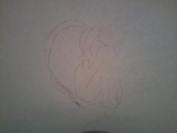 dessin pour le concour de dessin amateur