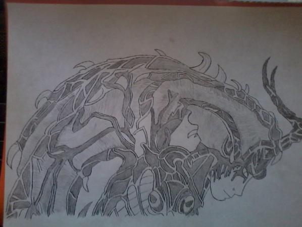 double dessin