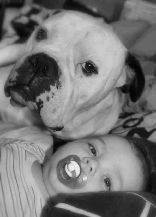 Notre petit garcon avec les animaux!