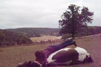 Mon royaume pour un cheval