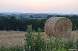 La nature nous donne de belles images le matin comme le soir....