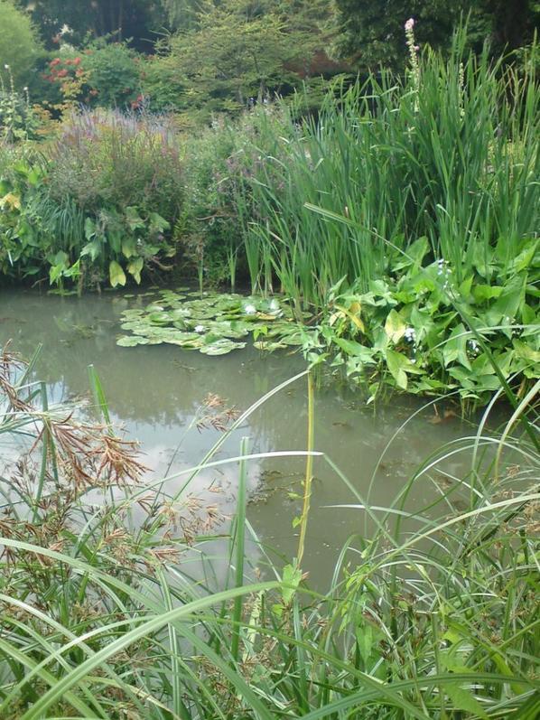 Visite du Jardin Botanique de Metz.