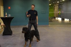 Brussels Dog Show 09/12/2012