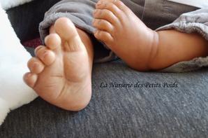 Malou - Adopté