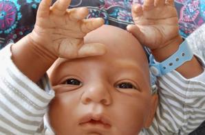 Malou -Adopté