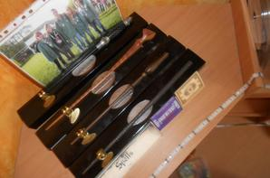 Voici ma collection Harry Potter