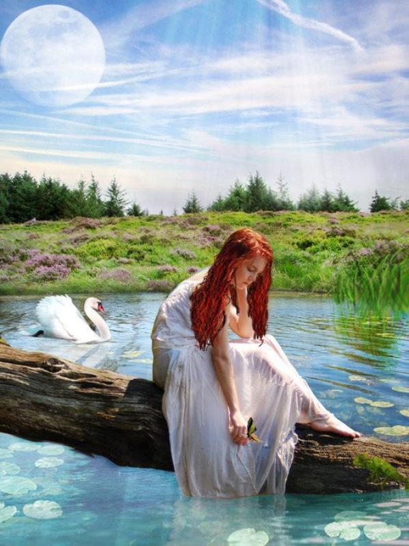 Image au bord de l'eau !!