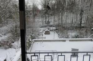 Ouf enfin un peu de neige