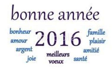 BONNE ANNEE BONNE SANT2 A VOUS TOUS MES AMIS!!!!!