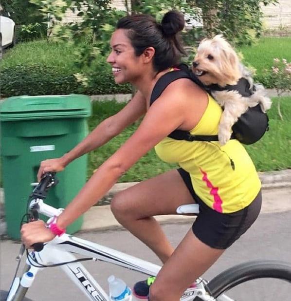 Une société américaine lance un sac-à-dos pour chien, génial pour l'emmener partout avec vous !