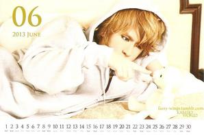 Petit Calendrier 2013 Kamijo