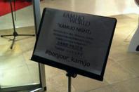 Soirée de Kamijo