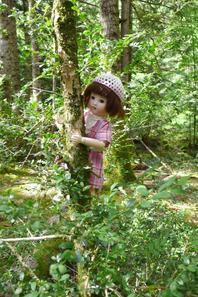 Balade en forêt ...moussue !