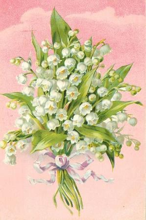 Excellent 1° Mai à toutes et à tous !