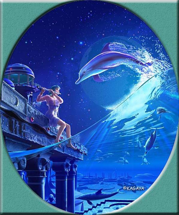 Dolphin forever ! Kagaya !