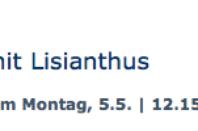 Gefäßfüllung mit Lisianthus - ARD-Buffet :: Die gute Idee | SWR.de