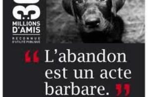 NON ! A L'ABANDON !!!!!