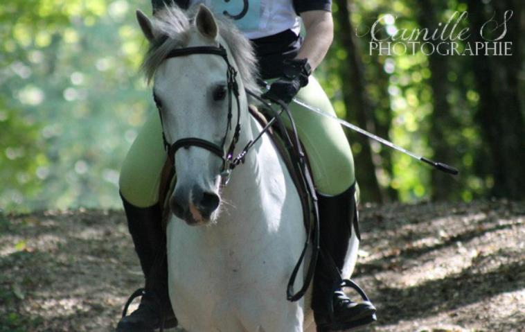 Vrac Equestre