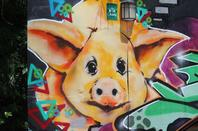 street art swinia