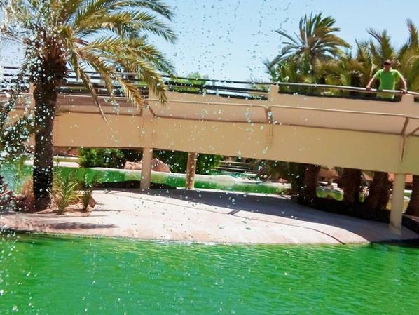 Parc De Crocodile Djerba.