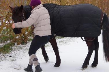 « Qui marche dans la neige ne peut pas cacher son passage. »