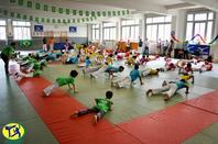 Jogaventura 2014 - Stage de Capoeira pour enfants à Paris