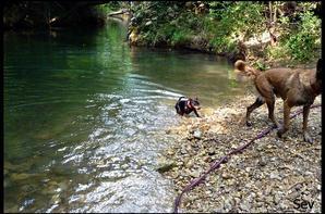 moment a la riviere