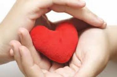 Chaque baiser est une fleur, dont la racine est le coeur