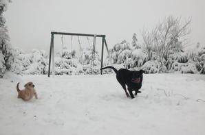 L'hiver est là...