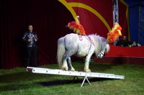 EDEN CIRCUS, LE SPECTACLE !! (03)