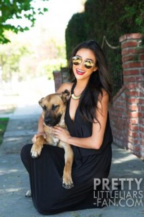Shay Mitchell & son chien