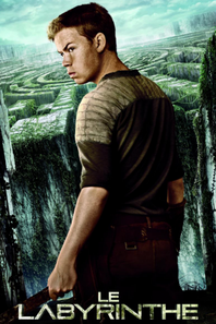 Le Labyrinthe posters