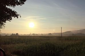 matin d automne