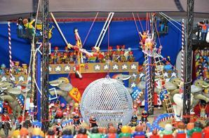 American Circus 3