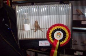 Belgische kampioenschap A.O.B 2013
